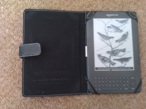 My Kindle 2